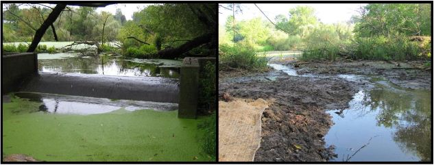 Full Structural Removal at Fredonia Creek