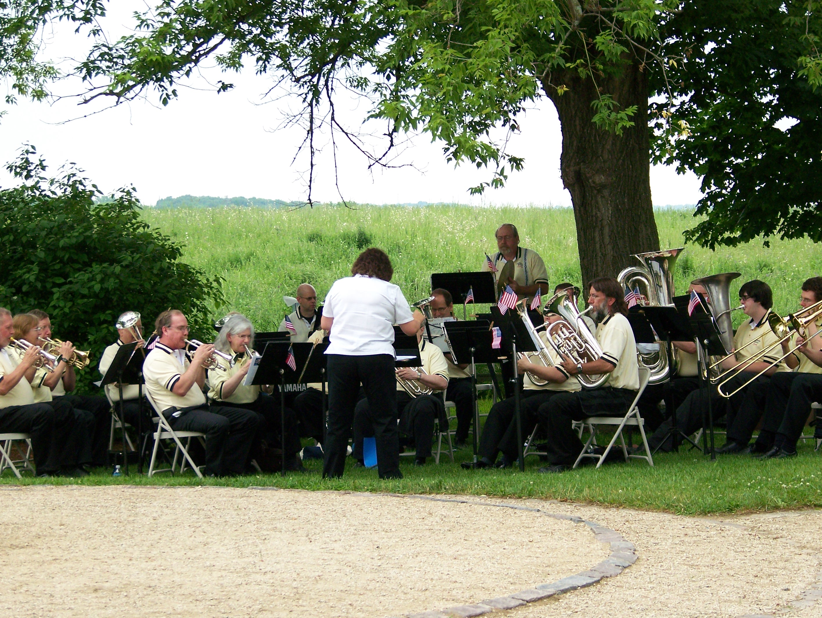 A Lovely Orchestra Playing Under a Tree